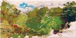 plein air painting, i get so shy