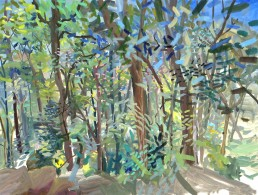 plein air painting, into the woods