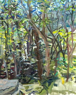 plein air painting, woods with mountain view